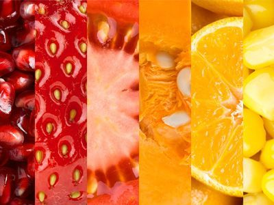 Do you know the Importance and Benefits of each Vitamin?