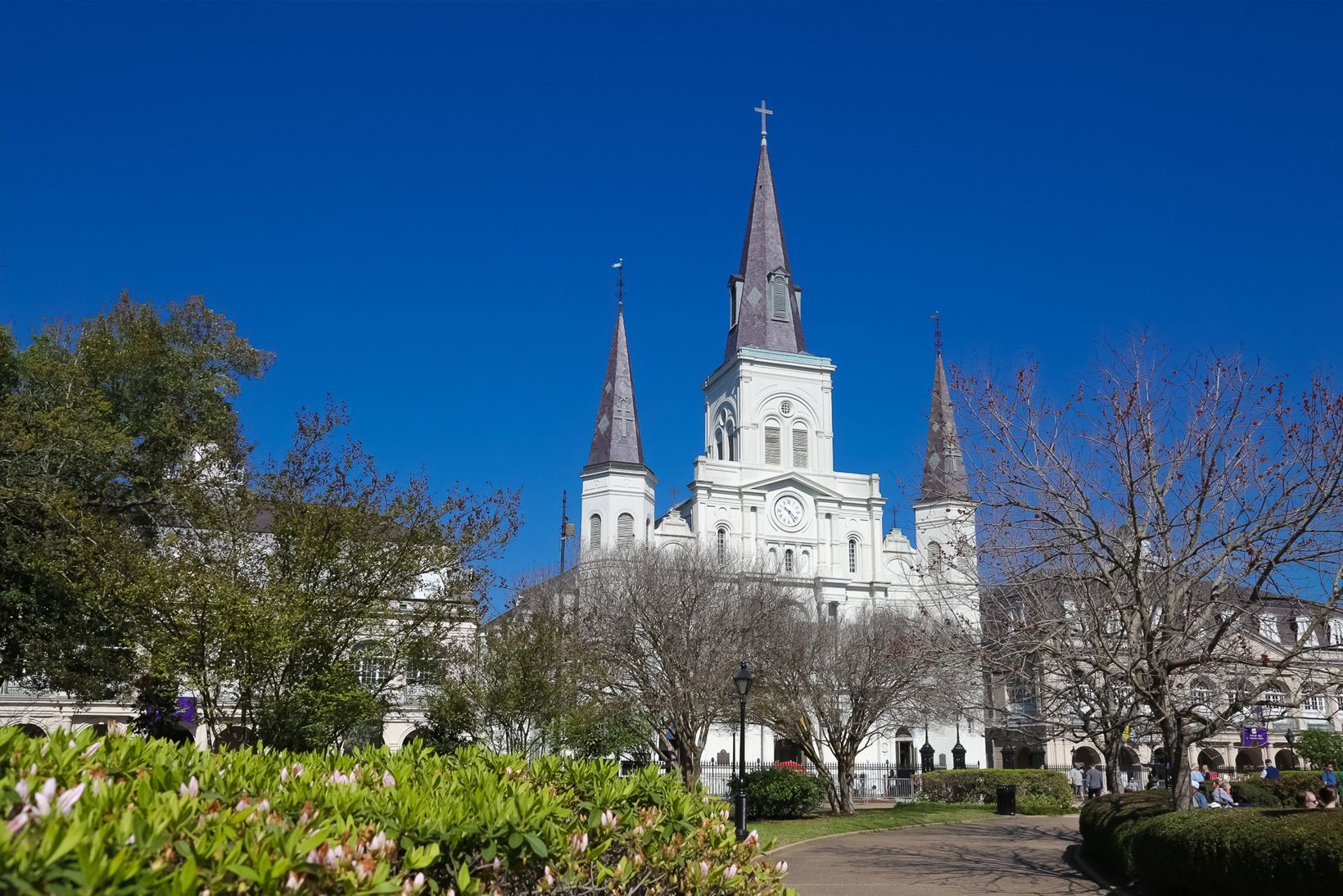 Saint Louis Cathedral, Jackson Square